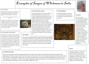 Steph Barry (2012) Example of Images of Wholeness in India